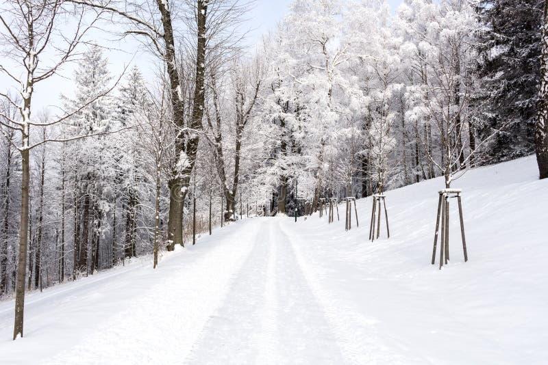 Foto del paisaje nevoso cubierta con nieve y el camino en invierno fotos de archivo