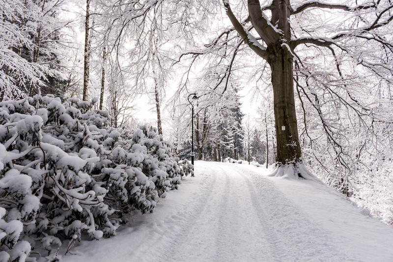 Foto del paisaje nevoso cubierta con nieve y el camino en invierno imagen de archivo
