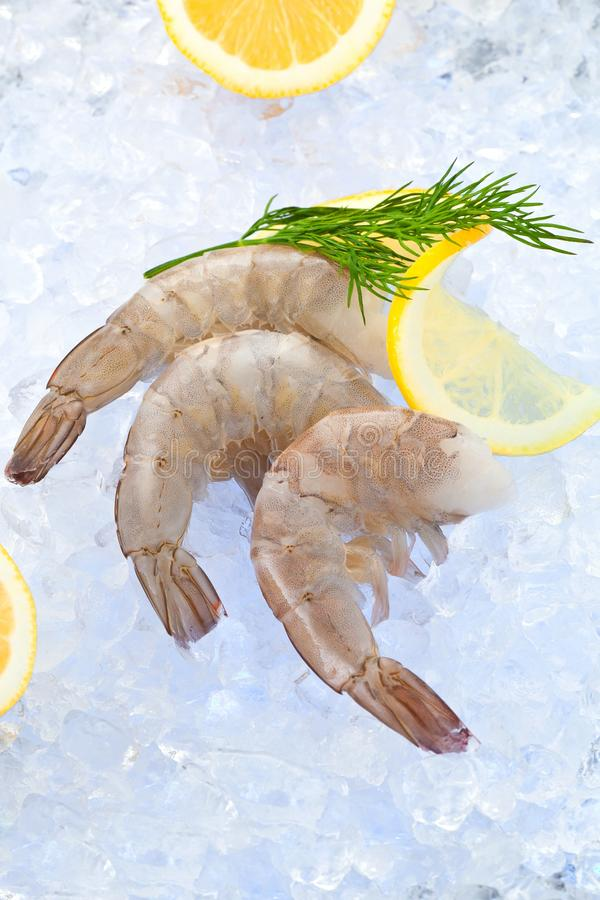 Foto del primer de gran tamaño del camarón crudo congelado con la cola quitada fotografía de archivo libre de regalías
