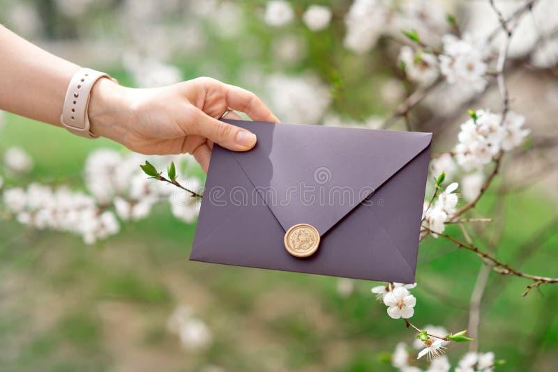 Foto del primer de las manos femeninas que sostienen el sobre púrpura de la invitación con el sello de la cera, vale, casandose fotos de archivo libres de regalías
