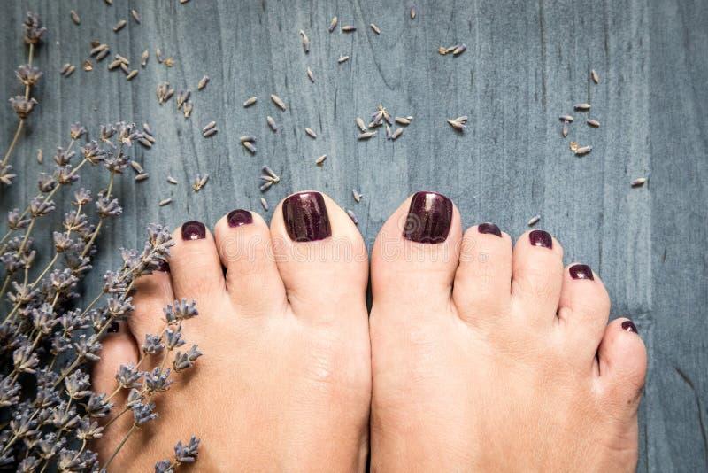 Foto del primer de pies femeninos con pedicura en clavos y lavend imagenes de archivo