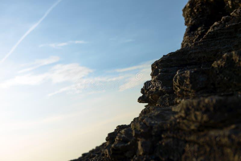 Download Foto Del Primo Piano Delle Rocce Sulla Riva Immagine Stock - Immagine di acqua, roccia: 55351261