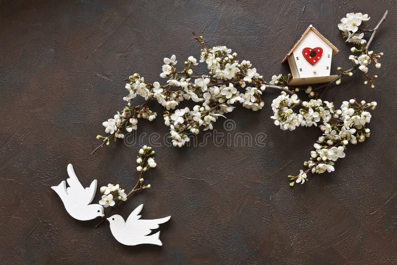 Foto del primo piano di bello branche di fioritura bianco di Cherry Tree con due uccelli e aviari di legno S immagine stock libera da diritti