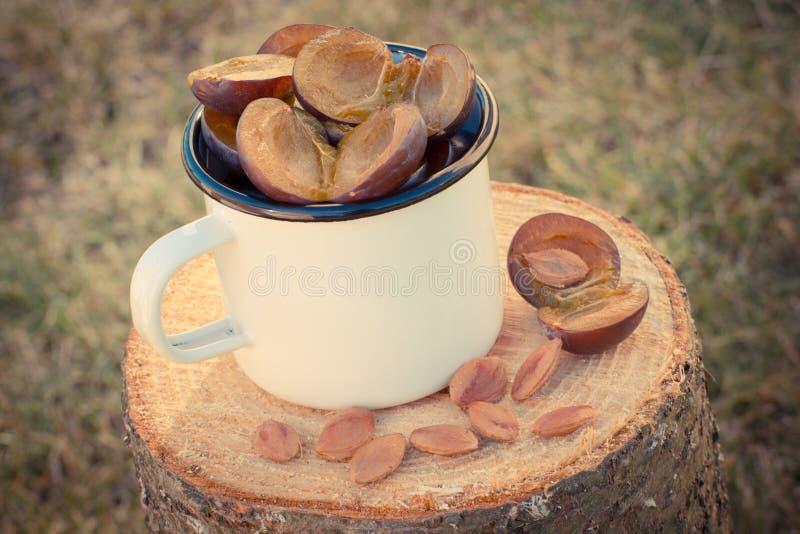 Foto del vintage, ciruelos en taza metálica en tocón de madera en jardín el día soleado imagen de archivo
