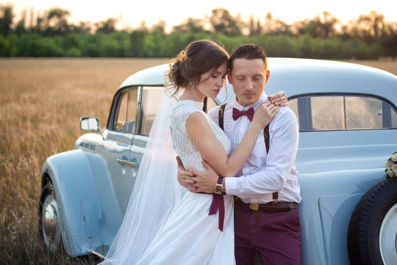 Foto delicata della sposa e dello sposo alla sessione di foto di nozze al tramonto nel campo fotografia stock libera da diritti