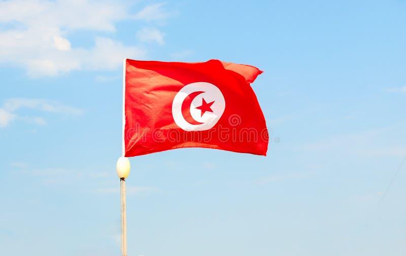 Foto della bandiera tunisina sul cielo limpido fotografia stock libera da diritti