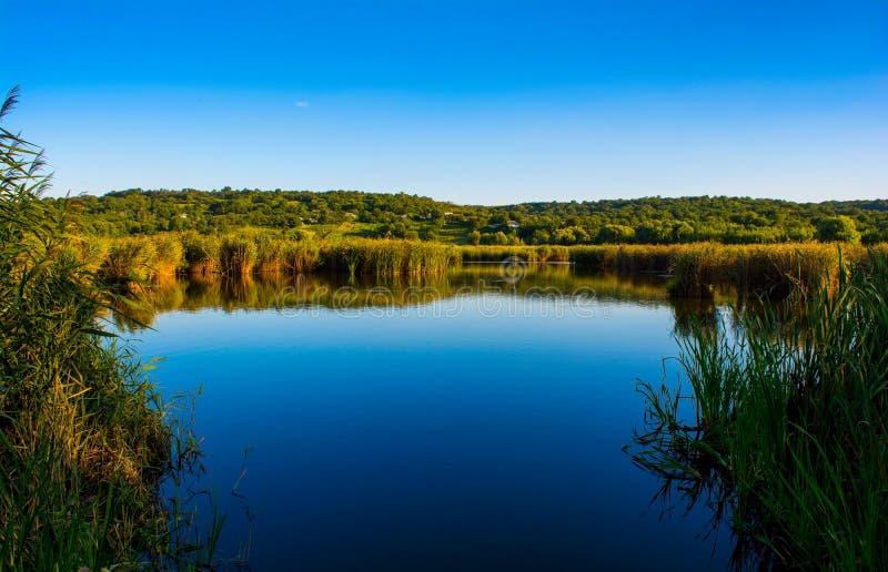 Foto della natura intorno al bello lago blu, da pesca posto fotografia stock libera da diritti