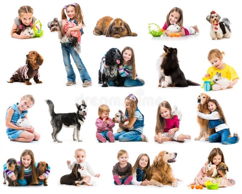 Foto della raccolta dei bambini piccoli con i cani e immagini stock libere da diritti