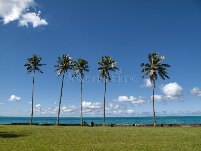 Foto della spiaggia dell'isola Figi migliore mai Giardino dell'erba verde con i una coppia di prima linea di seduta di persona immagine stock libera da diritti