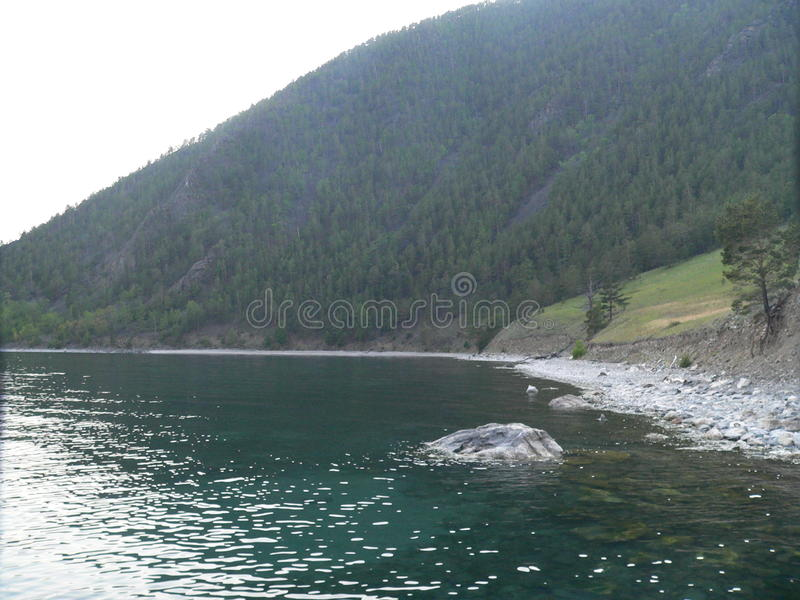 Foto der Sommerlandschaft mit Wald und dem Baikalsee in Russland, im klaren Wasser und in den felsigen Ufern, stockbilder