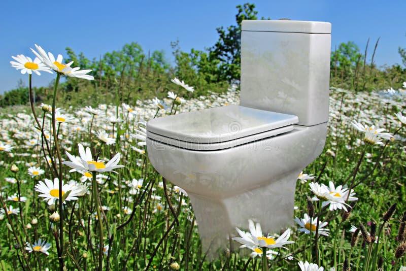 Neue Toilette der Wiese stockbilder