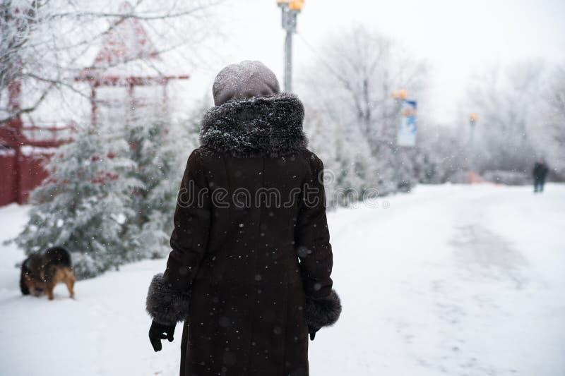 Foto der Winterbeschaffenheit des Parks Beschaffenheit von schneebedeckten Niederlassungen gegen einen weißen Winterpark Leutespa stockbild