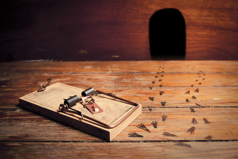 Foto des ausgelösten Mousetrap außerhalb des Mäusehauses stockfoto