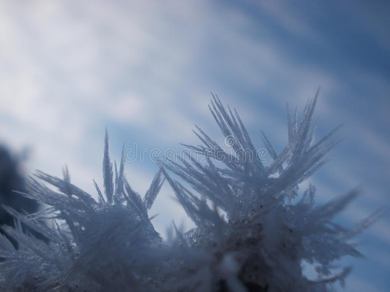 Foto des Frosts in der Winterzeit stockbilder