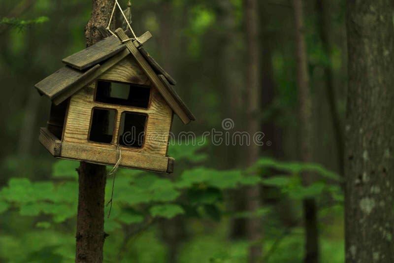 Foto des hölzernen Vogelhauses im kalten Sommerwald stockfotografie