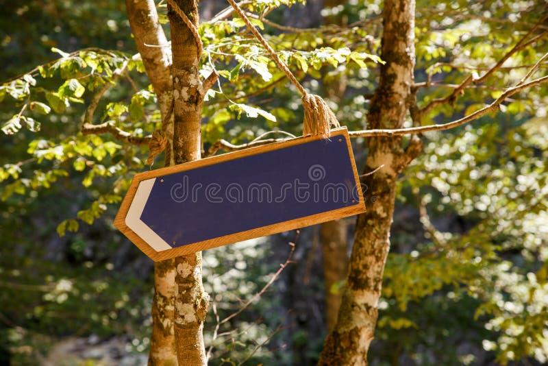 Foto des leeren Schildes für Aufschrift im Wald lizenzfreie stockfotos