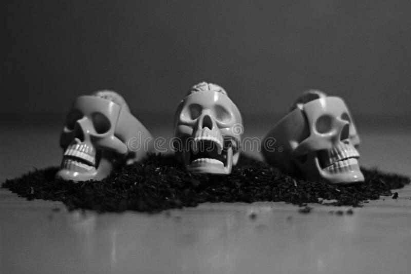 Foto di arte del cranio per tutti fotografie stock