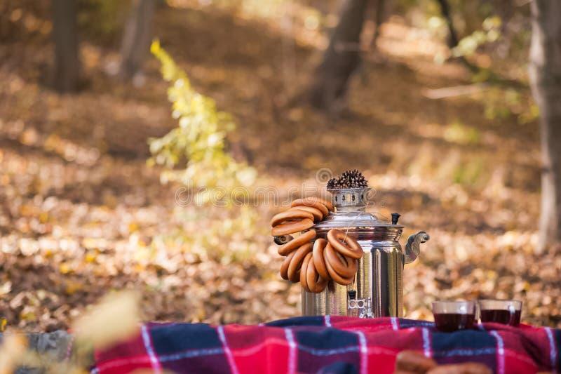 Foto di autunno Grande samovar rustica russa con essiccazione sui precedenti della foresta di autunno, plaid fotografia stock