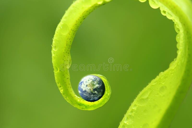 Foto di concetto di terra sulla natura verde, mappa della terra per gentile concessione di immagine stock
