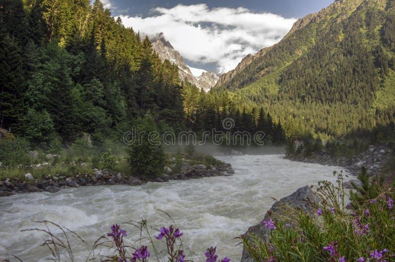 Foto di concetto di turismo di viaggio Georgia/Svaneti/Mestia fotografia stock libera da diritti