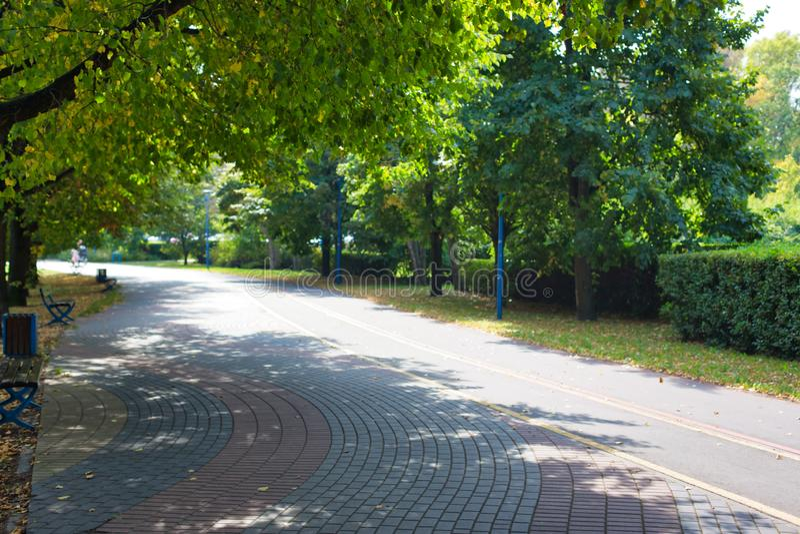 Foto di Footpath in park immagini stock libere da diritti