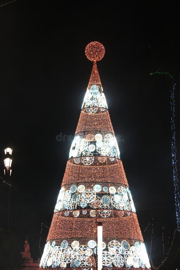 Foto di luce dell'albero di Natale immagine stock libera da diritti