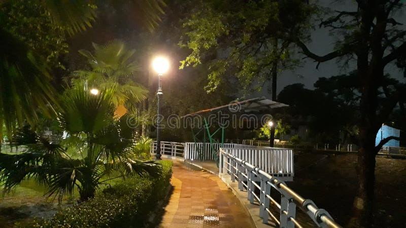 Foto di notte del giardino di Cinpany fotografie stock libere da diritti