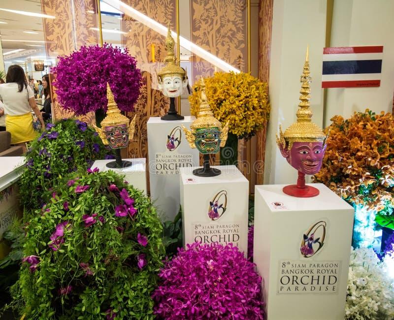 foto di paradiso dell'orchidea di Bangkok del modello presa il 26 novembre 2014 immagine stock