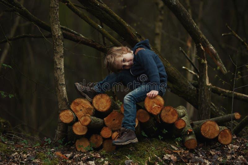 Foto di piccolo boscaiolo dolce immagine stock libera da diritti