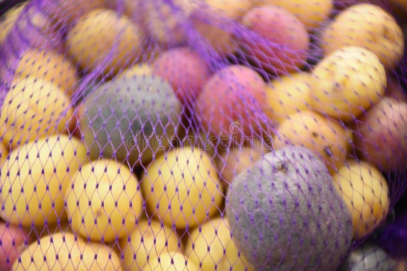 Foto di riserva del potatoe dell'arcobaleno fotografia stock