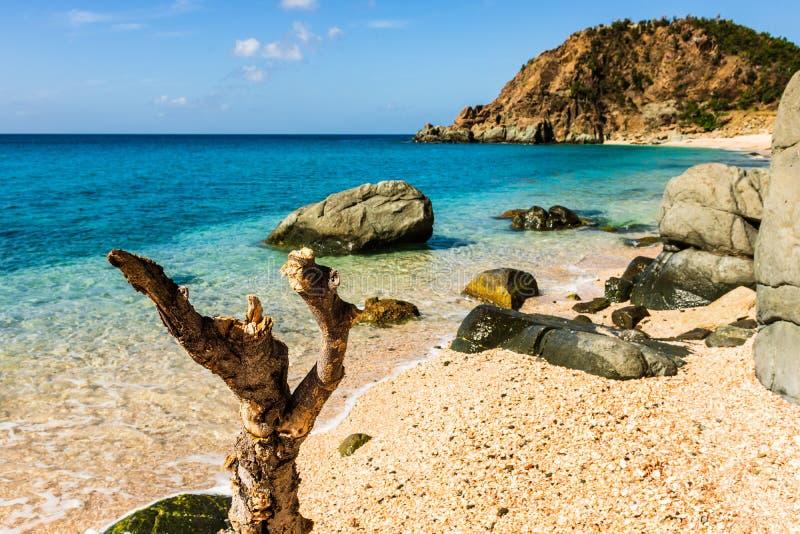 Foto di viaggio dell'isola della st Barth, i Caraibi Shell Beach famosa, nei Caraibi di St Bart della st Barth immagine stock libera da diritti