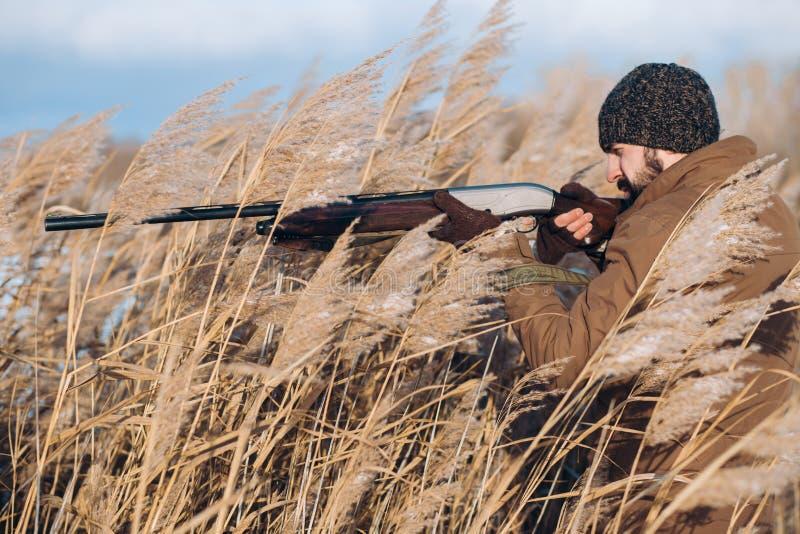 Foto di vista laterale il cacciatore esperto sta puntando sul buio selvaggio fotografie stock libere da diritti
