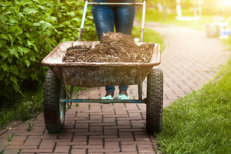 Foto do carrinho de mão do jardim com terra no dia ensolarado fotografia de stock
