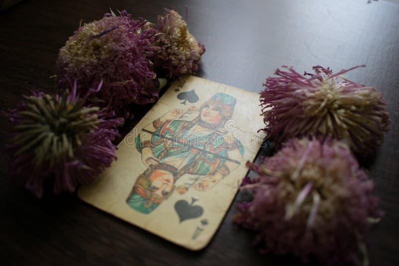 Foto do cartão de tarô foto de stock
