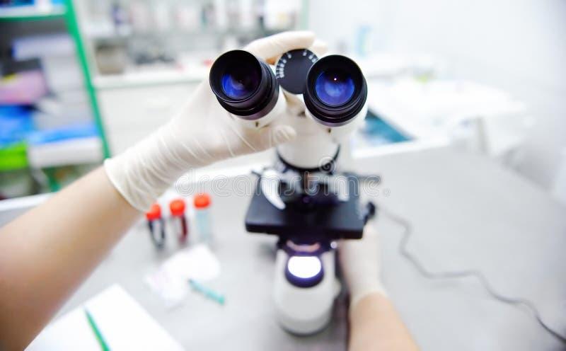 Foto do close-up das mãos do cientista com microscópio, as amostras de exame e o líquido foto de stock royalty free