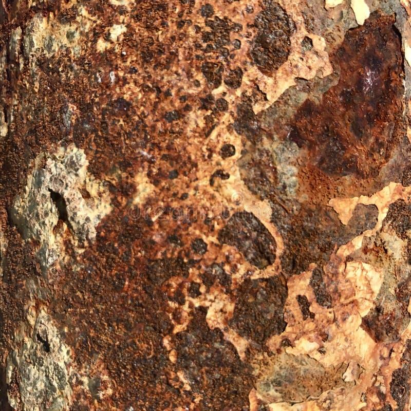 Foto do close-up de um teste padrão da oxidação imagem de stock royalty free