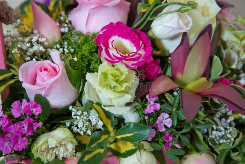 Foto do close-up de um vermelho, de um rosa e de uns fundos do bonteque das rosas Rosa no dia do Valentim s Rosas de Colorfull foto de stock royalty free