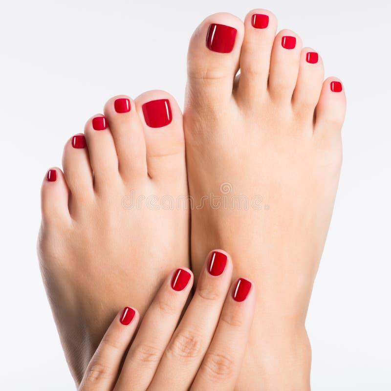 Foto do close up de uns pés fêmeas com o pedicure vermelho bonito imagem de stock royalty free