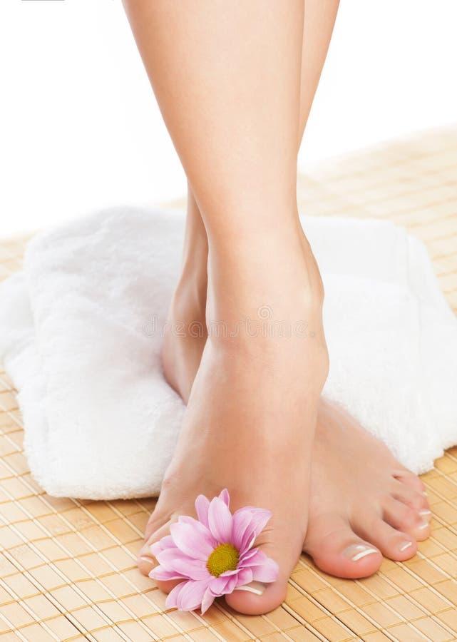 Close up dos pés fêmeas imagens de stock