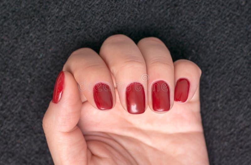 Foto do close up do mãos fêmeas bonitas com pregos vermelhos fotos de stock