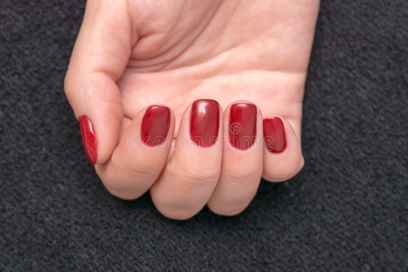 Foto do close up do mãos fêmeas bonitas com pregos vermelhos imagens de stock royalty free