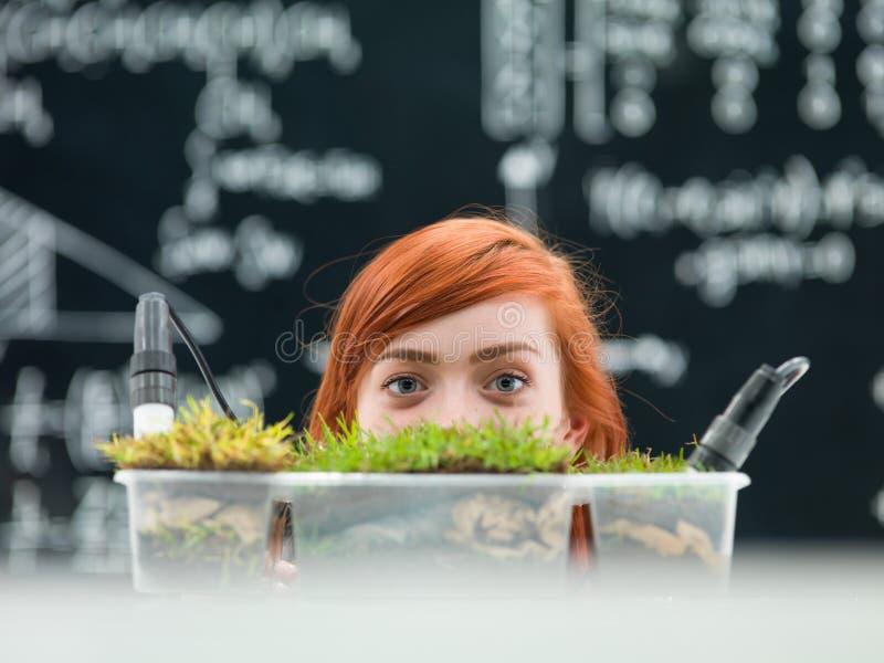 Foto do conceito de uma estudante de Medicina fêmea imagens de stock