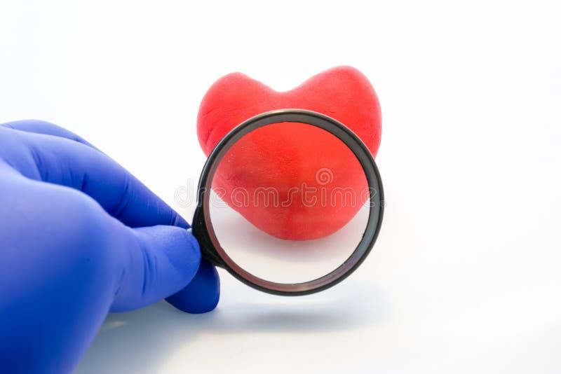 Foto do conceito do exame médico ou do diagnóstico do coração O doutor realiza na lupa gloved da mão, através qual pode SE imagem de stock