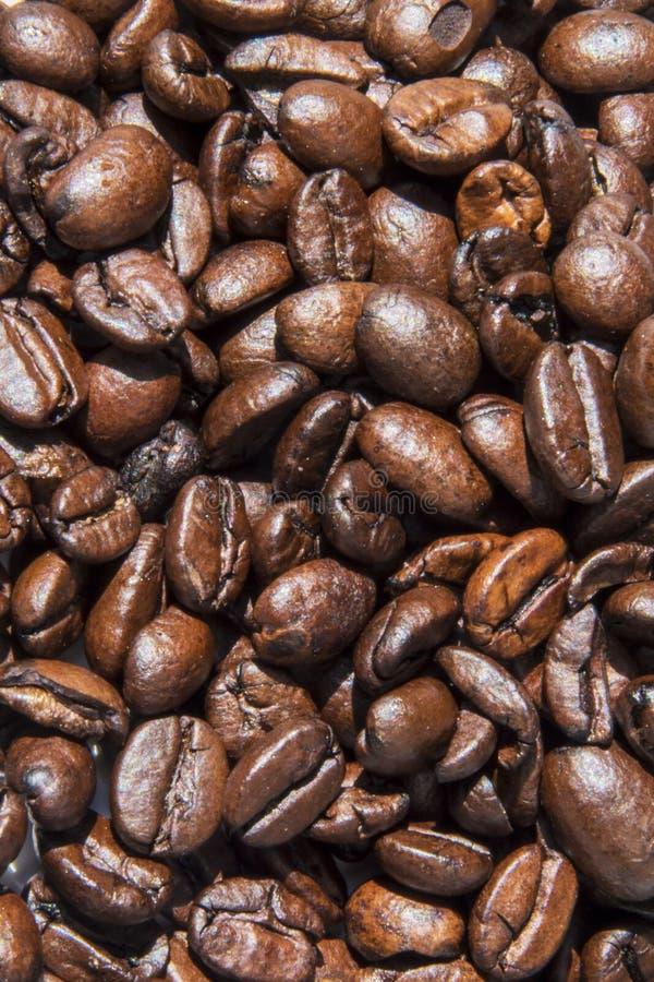 Foto do fundo dos feijões de café Imagem bonita, fundo, wa imagem de stock