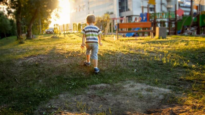 Foto do menino pequeno da criança que corre na grama no parque contra o céu bonito do por do sol fotos de stock royalty free