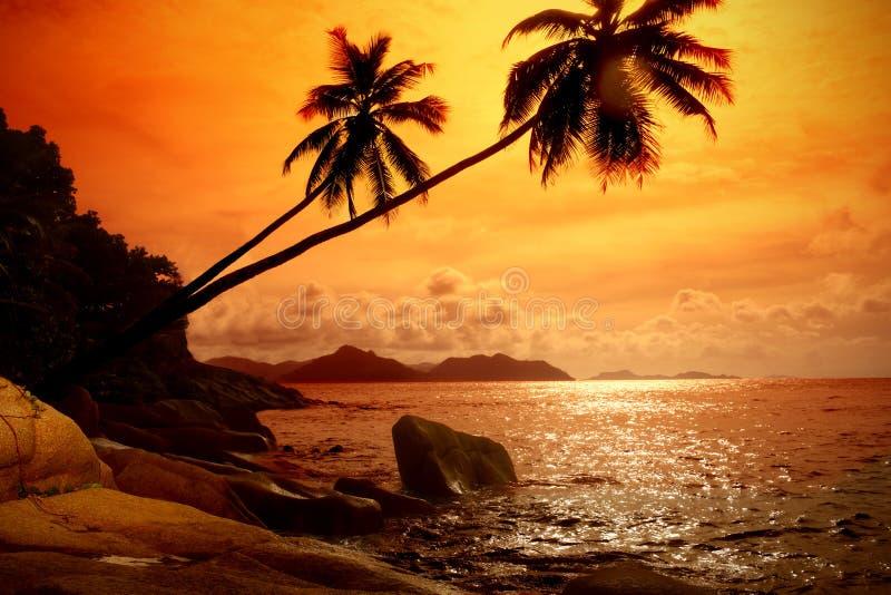 Foto do nascer do sol no mar fotos de stock