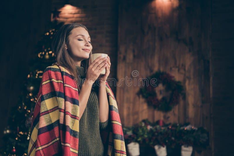 Foto do perfil de uma garota alegre positiva coberta de cobertor de cobertor de proteção de focinho aroma de ovos desfrute descan imagem de stock