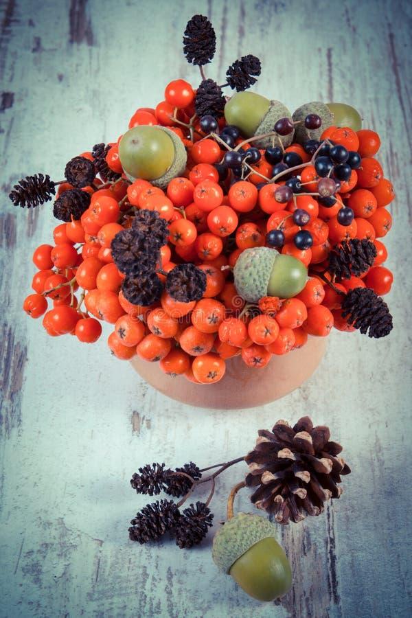 Foto do vintage, frutos do outono da floresta no fundo de madeira rústico fotos de stock