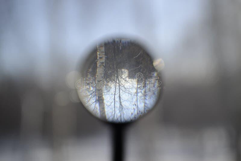 Foto durch eine Lupe stockbild