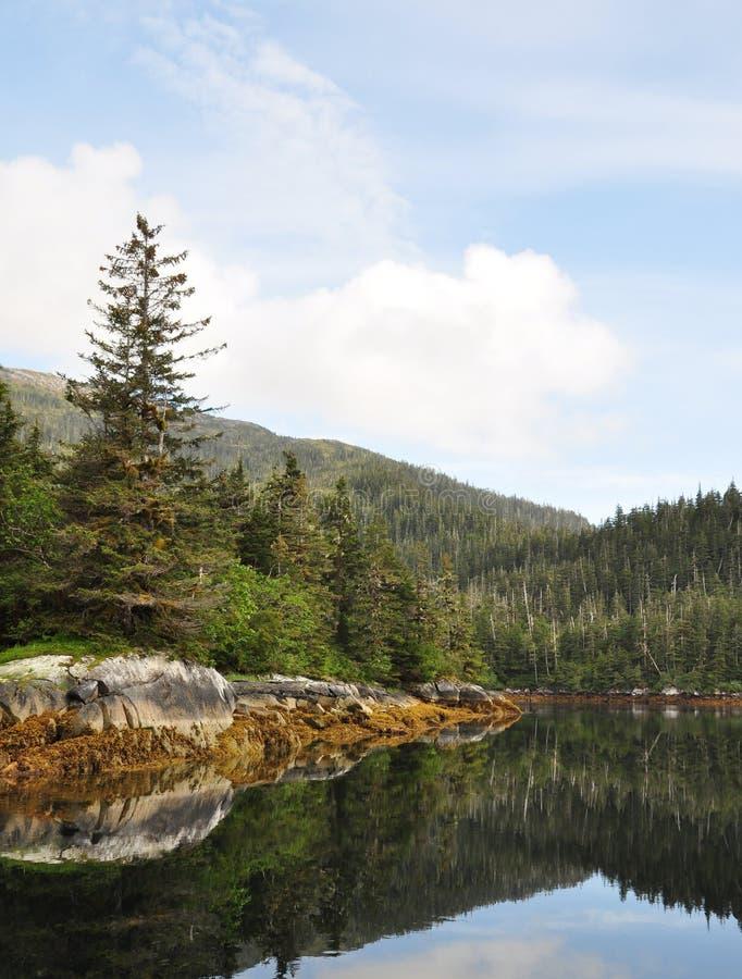 Foto eines Berges und der Bäume, die in das Wasser refelcting sind lizenzfreies stockfoto